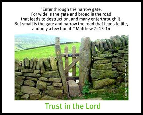 Image result for picture narrow gate