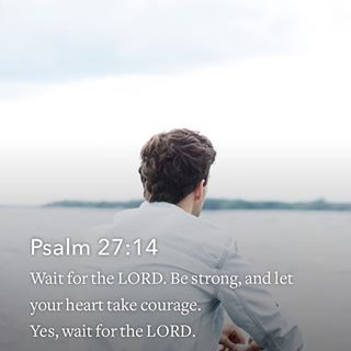 Image result for image patience palm 27:14 Bible